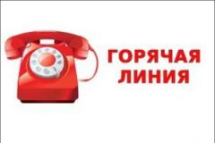 """В ГАУЗ «Городская поликлиника №10» появился телефон """"горячей линии""""."""